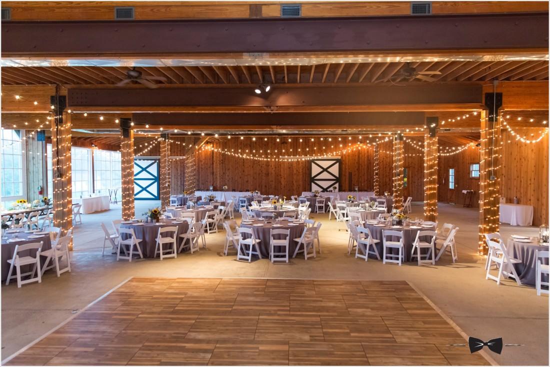 Castle Hill Cider Wedding Charlottesville Keswick Virginia 0027 1100x735